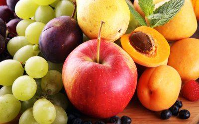 Diet & Varicose Veins