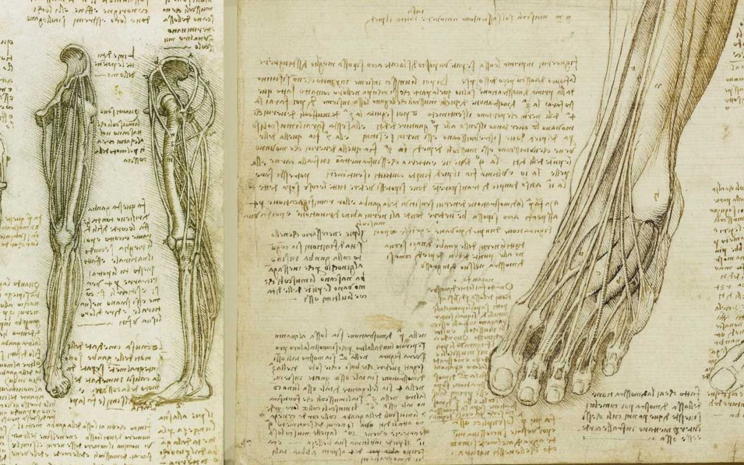 The history of varicose veins